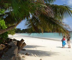 Seychellerne: Paradis ligger øst fra Afrika